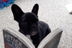 5-Tigo_Blitz-die-mijn-leesboek-aan-het-lezen-is